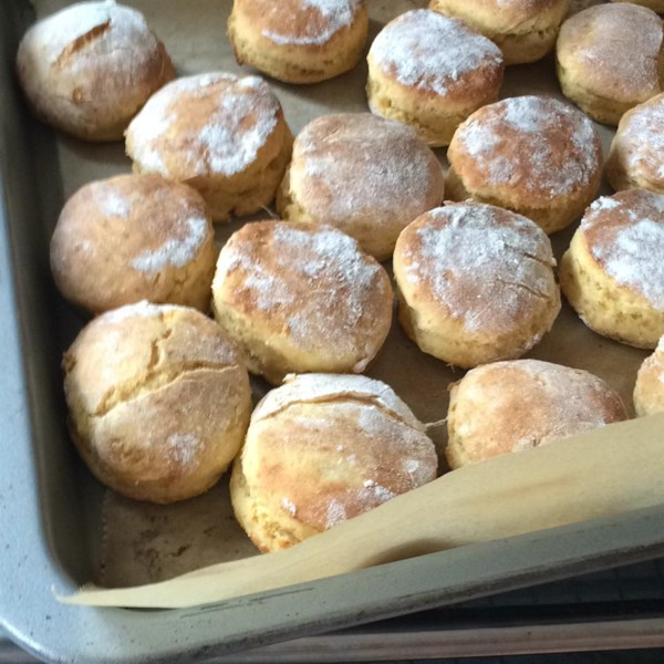Super simple sweet potato dog treats photos - New potatoes recipes treat ...