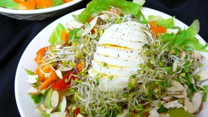Bird's Nest Salad