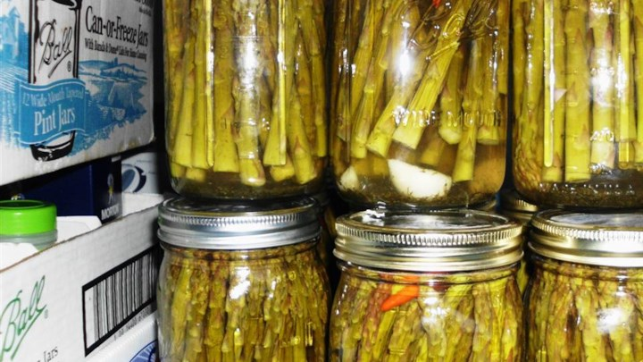 Pickled Asparagus II