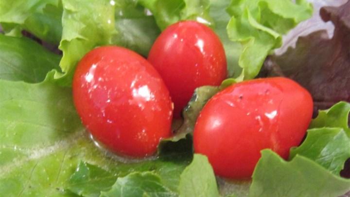 Lemon-Garlic Salad Dressing Recipe - Allrecipes.com
