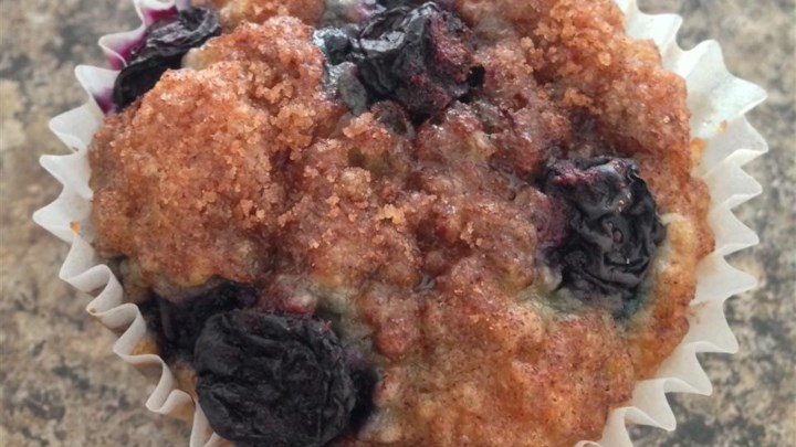 Blueberry Oatmeal Chia Seed Muffins
