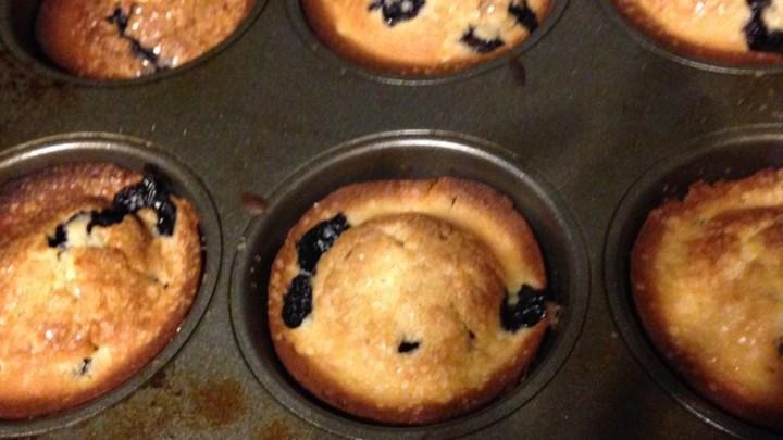 Alice's Easy Blueberry Cake