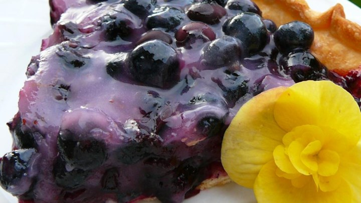 Topless Blueberry Pie