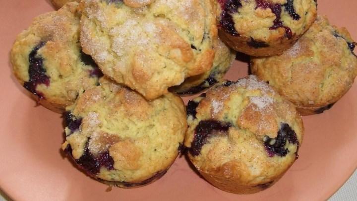 Blueberry oat muffins recipe - Garden lites blueberry oat muffins ...