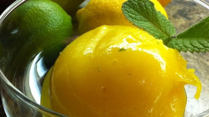 Mango Tango Sorbet