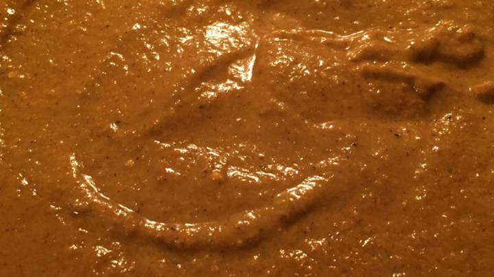 Basic Curry Sauce