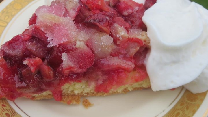 Rhubarb Surprise Pie