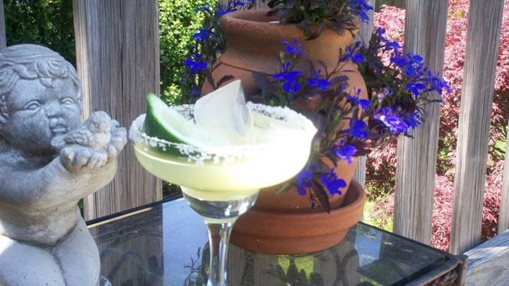 Austin Margarita (aka Mexican Martini)