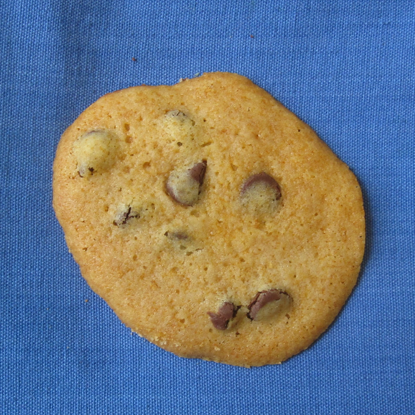Honey Chocolate Chip Cookie
