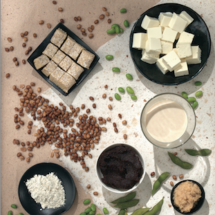 Soy Healthy Food Guide