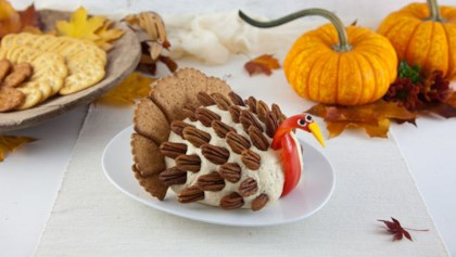 Thanksgiving appetizer recipes allrecipes tips tricks thanksgiving turkey cheese ball forumfinder Gallery