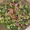 Broccoli Cranberry Salad Recipe - Fresh broccoli makes an easy salad with crumbled bacon and dried cranberries in a creamy and tangy mayonnaise dressing.