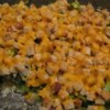 Broccoli and Stuffing Casserole Recipe - This hearty meat-free casserole is suitable as a Thanksgiving side dish or entree for vegetarians.