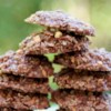 No Bake Cookies I Recipe and Video - Tasty no-bake cookies made with oatmeal, peanut butter and cocoa.