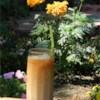 Thai Iced Tea Recipe - Bring the taste of Thailand to your home with this refreshing and sweet Thai iced tea recipe.