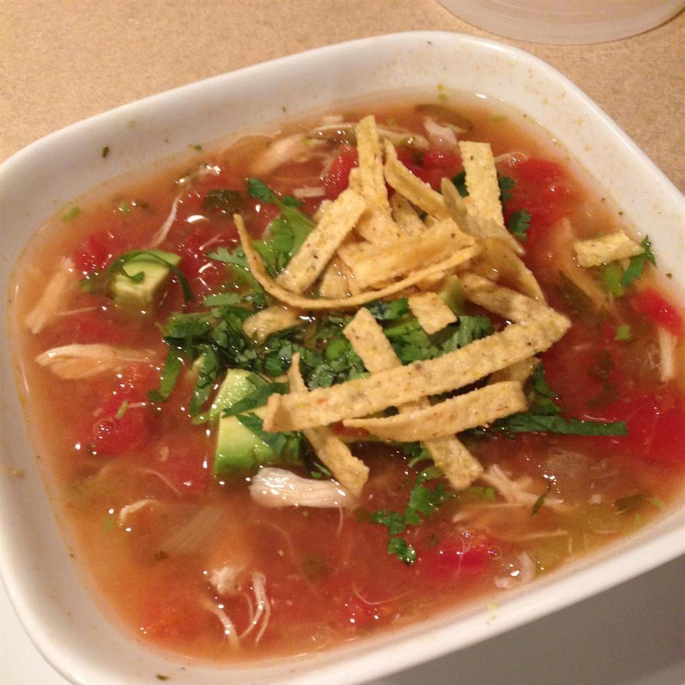Tortilla Soup II HaleyMarie