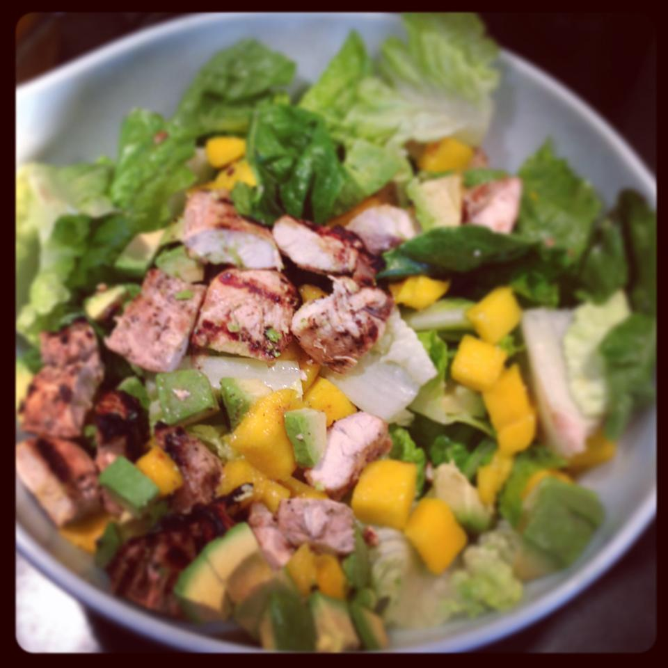 Chicken, Avocado and Mango Salad Vince Brown