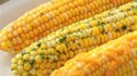 More pictures of Corn on the Cob Topping Twisters - Cheddar BBQ