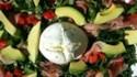 More pictures of Avocado Burrata Salad