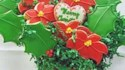 More pictures of Dora's Christmas Cookies