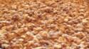 More pictures of Crispiest Apple Crisp