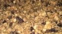 More pictures of Peanut Butter Granola
