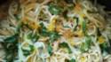 More pictures of Ricotta Spaghetti