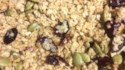 More pictures of Easy Cranberry Granola