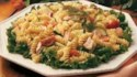 More pictures of Salmon Pasta Salad