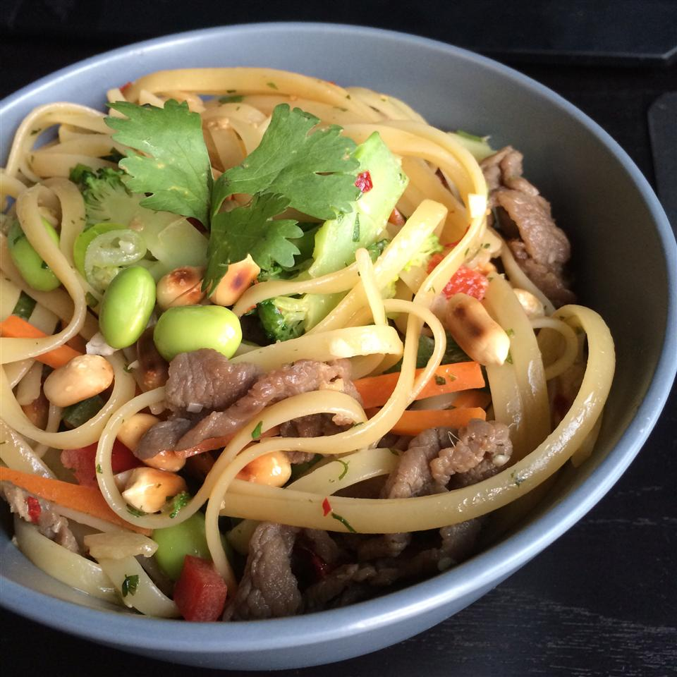 Asian Pasta Salad with Beef, Broccoli and Bean Sprouts thepixelninja