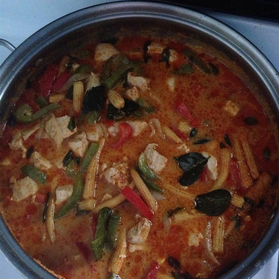 Panang Curry with Chicken TokyoRose