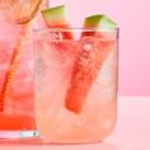 Watermelon Cucumber Basil Seltzer