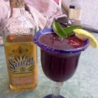 Purple and Gold Margarita - Gold tequila and raspberry liqueur shaken up with sour mix.