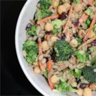 Trees, Seeds, and Beans (Broccoli Slaw) - Combine broccoli, carrots, sunflower seeds, and garbanzo beans together for a colorful salad everyone in the family will love.