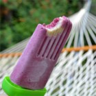 Fresh Fruit and Yogurt Ice Pops - Make your own fresh fruit-filled popsicles by blending assorted summer berries and sliced bananas with yogurt, then freezing the tasty mixture in small paper cups with popsicle sticks.