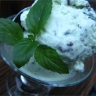 Homemade Mint Chocolate Chip Ice Cream - This egg-free ice cream treat is thickened with sweetened condensed milk and doesn't require any cooking.