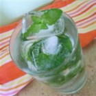 Mint Ice Cubes - These wonderful little cubes add just a touch of flavor to those summertime glasses of lemonade.