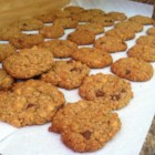 Lactation Cookies - These cookies feature brewers' yeast, wheat germ, flax seed, and whole oats to help support milk production for lactating mothers.