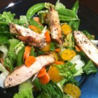 Grilled Orange Vinaigrette Chicken Salad - Lots of oranges in this one. There's orange juice in the dressing and mandarin orange sections in the salad. And the grilled chicken is basted and grilled with a bit of the orange marinade.