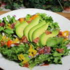 Quick Avocado Salad - This green salad uses fresh avocado slices, white onion, red onion, and bacon bits.