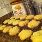 Avocado Cookies - Avocado cookies are regular sugar cookies with the added bonus of avocado to the dough. Eat with milk, coffee, or tea!