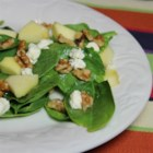 Spinach and Goat Cheese Salad - This quick and easy salad is nothing more than fresh spinach topped with goat cheese, apple, and walnuts.
