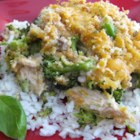 Quick and Easy Chicken Divan - This casserole featuring chicken and broccoli is a delicious, quick, and easy recipe for any night of the week!