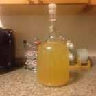 Homemade Wine - This is an easy recipe for homemade wine. You can choose whatever flavor you like but my favorite is the red. You will need a sterile milk jug, a large latex balloon and a rubber band to complete the project. This Wine is a bit stronger than regular table wine. Its great for cooking as well as drinking.
