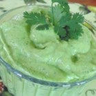 Cilantro-Avocado Chimichurri Sauce - This rich and creamy avocado dip with plenty of fresh cilantro and parsley is a great condiment for Mexican food. It's quick and easy to make, too!