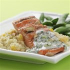 Cashew Salmon with Apricot Couscous - Yogurt sauce flavored with lemon, cumin and cilantro tops this Indian-inspired grilled salmon.
