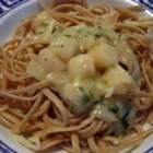 Scallop Scampi - Tender bay scallops are cooked quickly in a tasty sauce of garlic, onion, white wine, chicken broth and Romano cheese. Toss fresh green parsley into the mix and pour over cooked linguine. Serve with a sprinkling of Romano cheese.