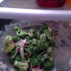 Broccoli Salad - A healthy, bright salad. Originally submitted to ThanksgivingRecipe.com.
