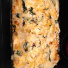 Maine Lobster Lasagna - I made up this recipe because my hubby wanted to try a lasagna made with lobster meat.  I combine tender steamed Maine lobster chunks in between pasta, jarred or homemade Alfredo Sauce and fresh spinach and ricotta, Cheddar and Parmesan cheeses. Serve with a tossed garden salad and oven toasted garlic bread.