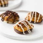 Turtle Pretzel Candy Clusters - Dark melting wafers are topped with a pretzel, a bit of caramel, and a pecan half for these pretty 'turtle' treats.